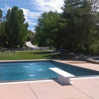 pool with diving board and water feature